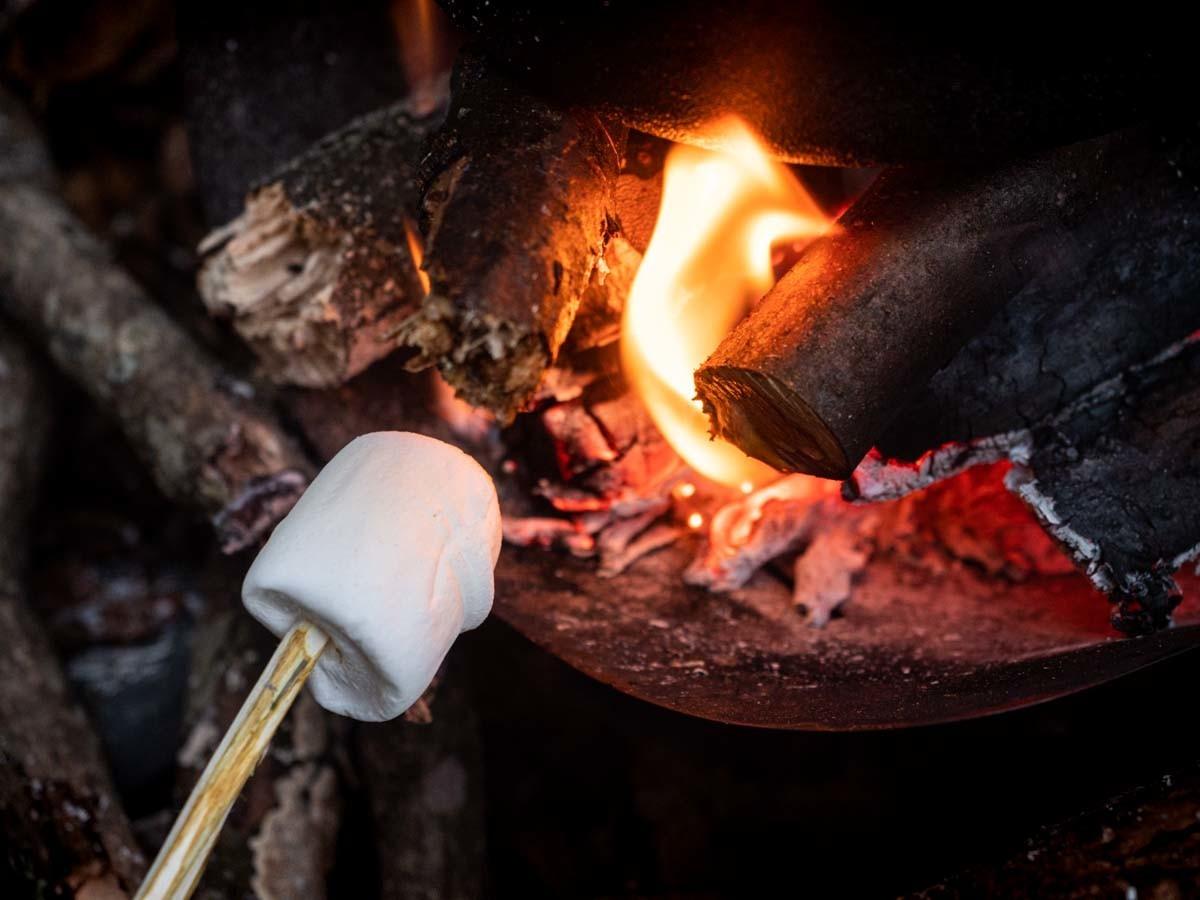 焚き火でマシュマロを焼く