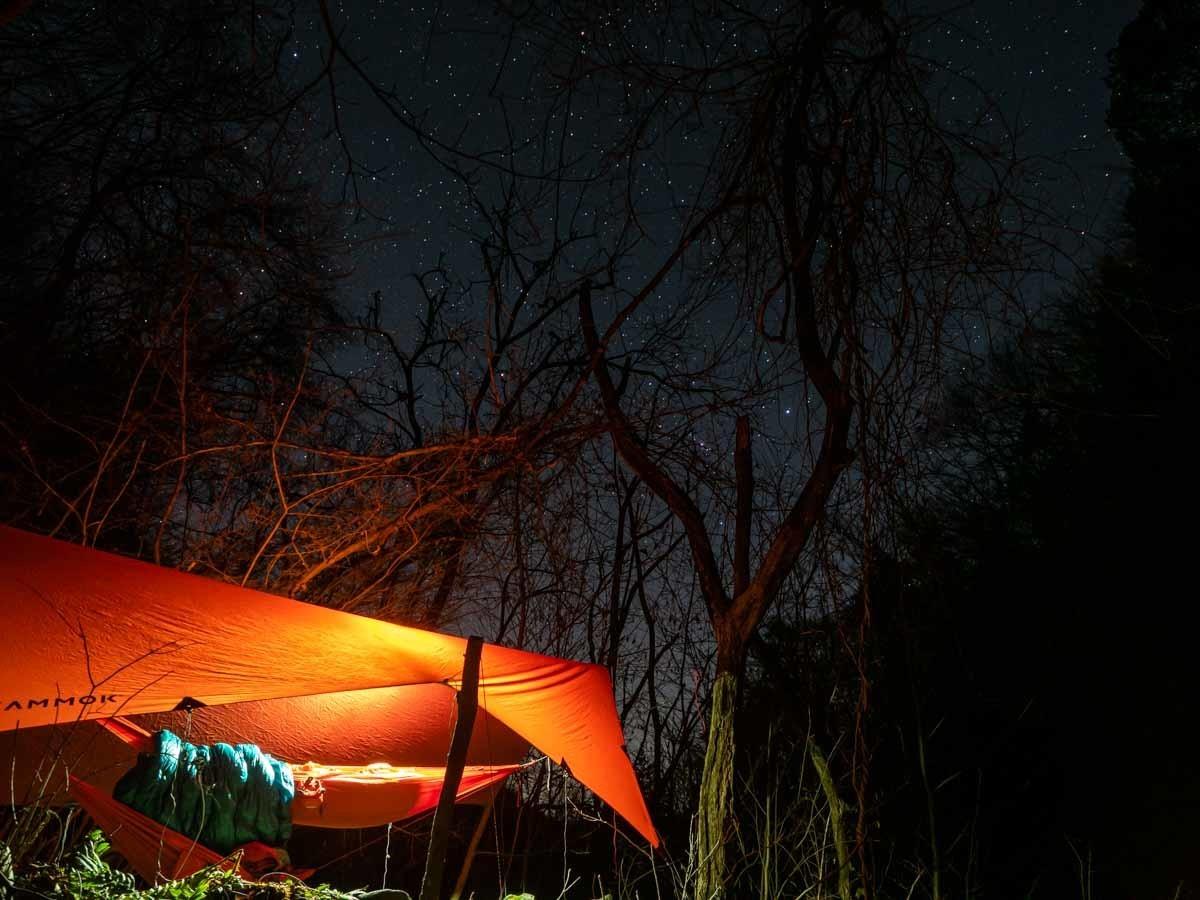 ハンモック泊の夜の星空