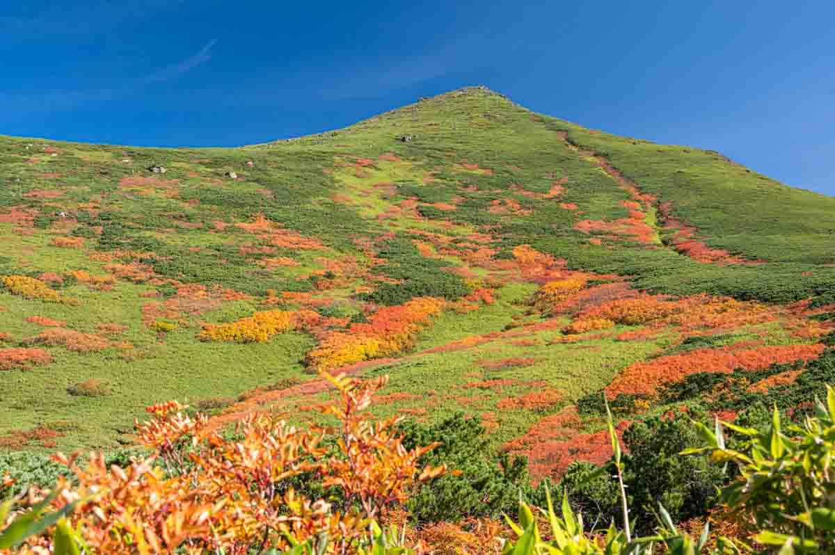 大雪山 テント泊登山