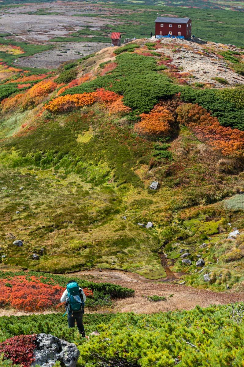 白雲岳避難小屋と紅葉