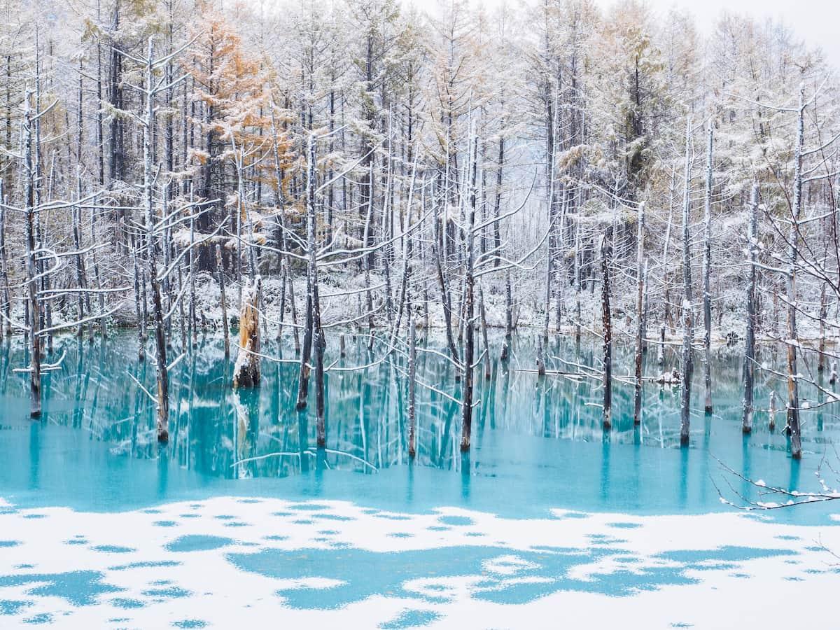 凍結する青い池