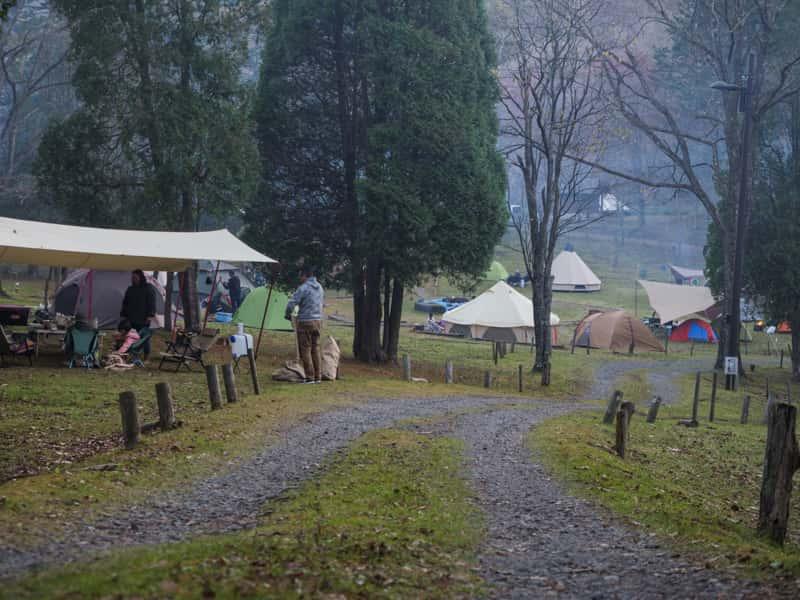ソロキャンプ 人がいっぱいのキャンプ場